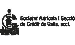 logo cascv